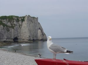 the_gardian_of_etretat